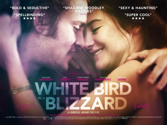 white_bird_in_a_blizzard_ver4